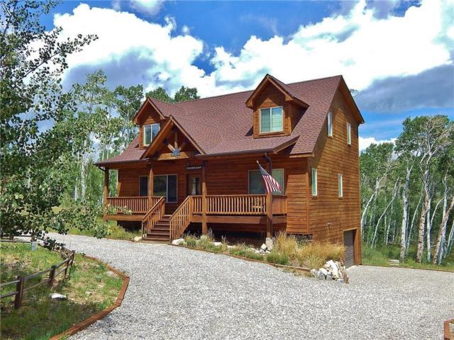 3080 High Creek Road, Fairplay, CO 80440 (MLS #S1010726) :: Resort Real Estate Experts