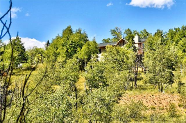 293 Old Squaw Road, Como, CO 80432 (MLS #S1010815) :: Colorado Real Estate Summit County, LLC