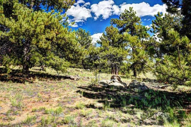 78 Stone Way, Hartsel, CO 80449 (MLS #S1010824) :: Resort Real Estate Experts
