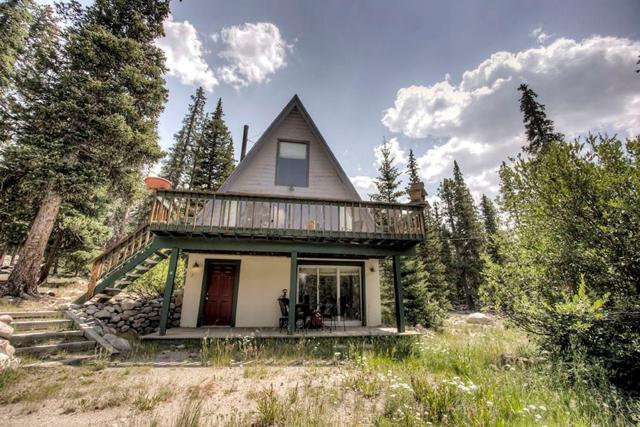 466 Gold Trail, Fairplay, CO 80440 (MLS #S1010870) :: Resort Real Estate Experts