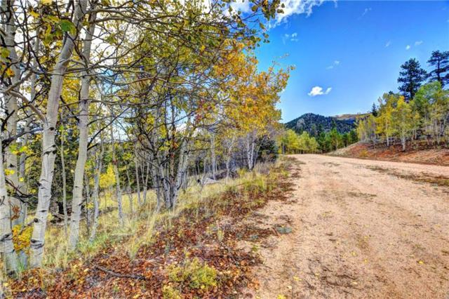 365 Bonus Gulch Way, Jefferson, CO 80456 (MLS #S1010895) :: Colorado Real Estate Summit County, LLC