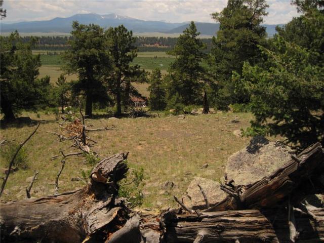 lot 346 Troutcreek, Fairplay, CO 80440 (MLS #S1010908) :: Colorado Real Estate Summit County, LLC