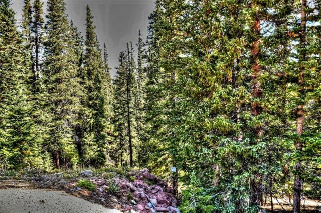 TBD Silverheels Circle, Fairplay, CO 80440 (MLS #S1010911) :: Resort Real Estate Experts