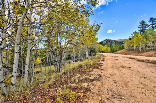 365 Bonus Gulch Way, Jefferson, CO 80456 (MLS #S1010912) :: Colorado Real Estate Summit County, LLC