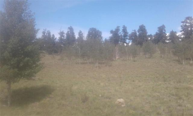 606 Superstition, Hartsel, CO 80449 (MLS #S1010913) :: Resort Real Estate Experts