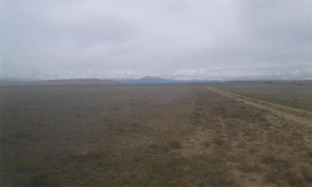 4232 Hinsdale Road, Hartsel, CO 80449 (MLS #S1010914) :: Resort Real Estate Experts