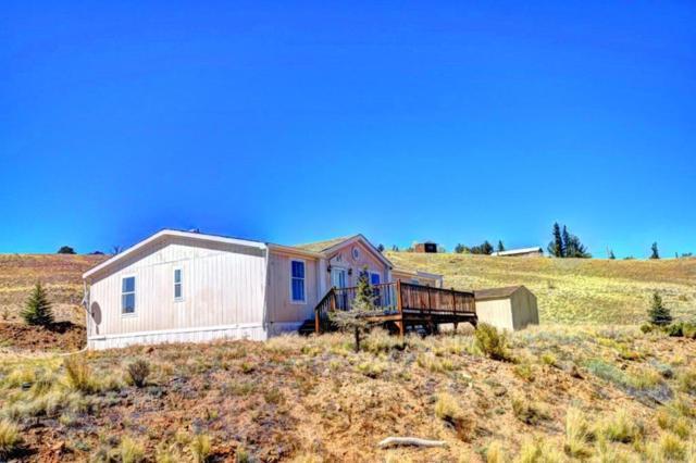 101 Shotgun Court, Como, CO 80432 (MLS #S1010966) :: Resort Real Estate Experts