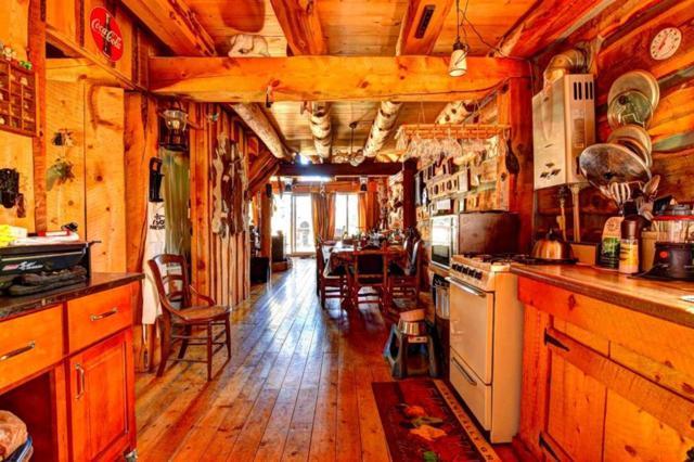 119 Bronco Circle, Jefferson, CO 80456 (MLS #S1010972) :: Resort Real Estate Experts