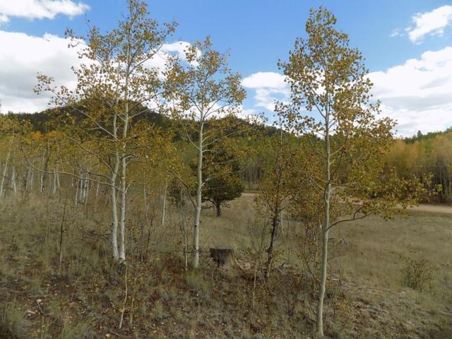 2165 Al Gulch Road, Jefferson, CO 80456 (MLS #S1010985) :: Colorado Real Estate Summit County, LLC