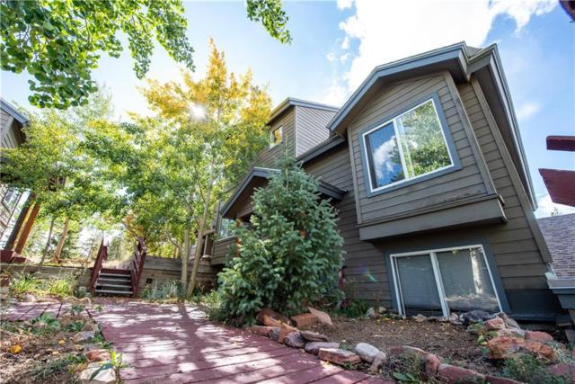 53 Spyglass Lane #53, Silverthorne, CO 80435 (MLS #S1010992) :: Colorado Real Estate Summit County, LLC