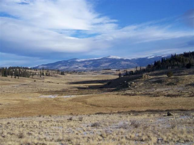TBD Aqua Road, Como, CO 80432 (MLS #S1011040) :: Colorado Real Estate Summit County, LLC