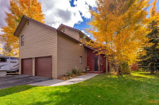 381 W Coyote Drive W, Silverthorne, CO 80498 (MLS #S1011131) :: Colorado Real Estate Summit County, LLC
