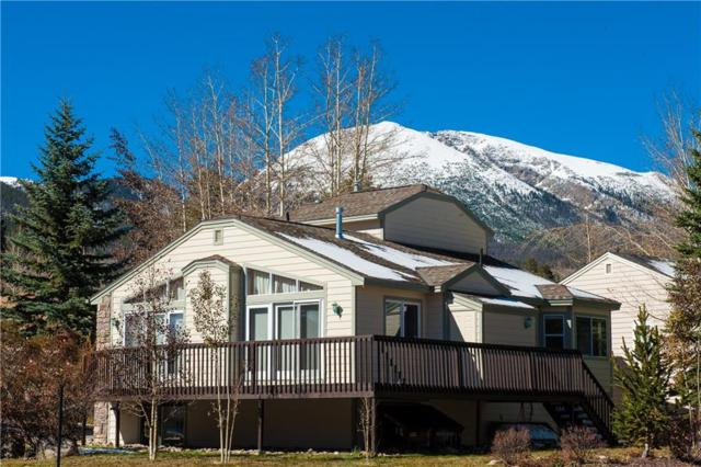 280 N 6th Avenue N, Frisco, CO 80443 (MLS #S1011228) :: Resort Real Estate Experts