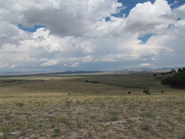 145 Stacker Drive, Hartsel, CO 80449 (MLS #S1011282) :: Colorado Real Estate Summit County, LLC