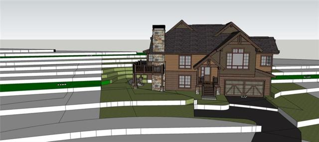 224 Telluride Court, Dillon, CO 80435 (MLS #S1011322) :: Colorado Real Estate Summit County, LLC