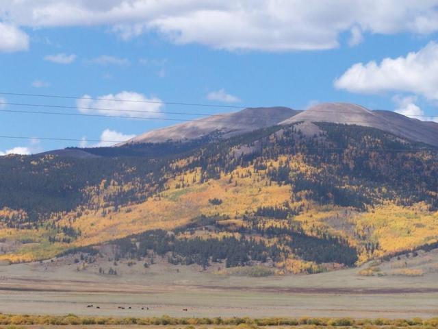 85 Kenosha Drive, Jefferson, CO 80456 (MLS #S1011323) :: Colorado Real Estate Summit County, LLC