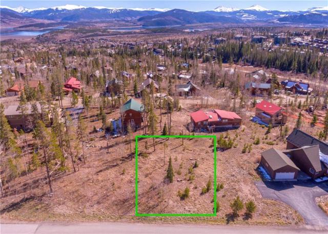 2049 Larkspur Lane, Silverthorne, CO 80498 (MLS #S1011365) :: Colorado Real Estate Summit County, LLC
