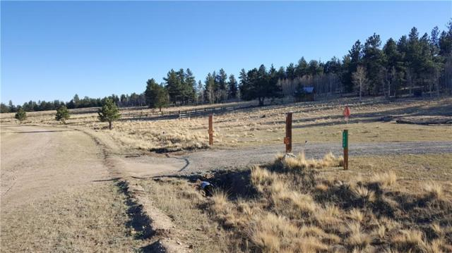 1029 Superstition Trail, Hartsel, CO 80449 (MLS #S1011383) :: Resort Real Estate Experts
