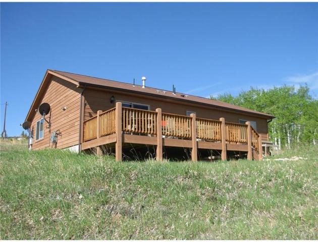 3156 High Creek Road, Fairplay, CO 80440 (MLS #S1011482) :: Resort Real Estate Experts