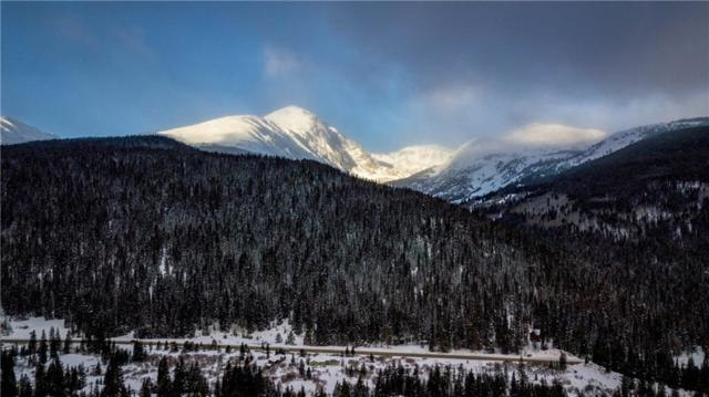 387 Scr 628, Breckenridge, CO 80424 (MLS #S1011490) :: Colorado Real Estate Summit County, LLC