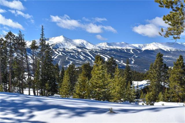 306 N Fuller Placer Road N, Breckenridge, CO 80424 (MLS #S1011543) :: Colorado Real Estate Summit County, LLC