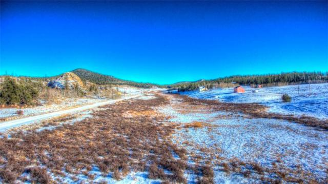 1441 Longbow Drive, Como, CO 80432 (MLS #S1011551) :: Resort Real Estate Experts