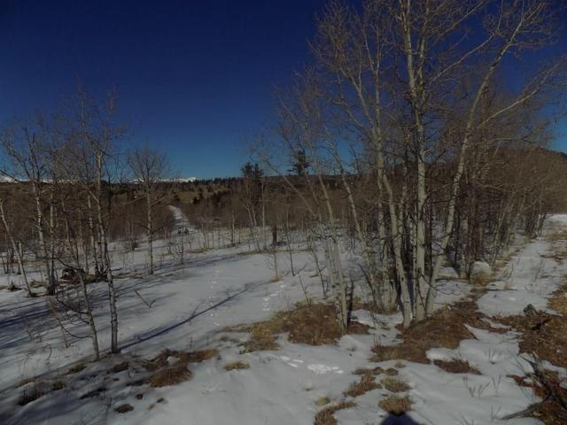 23 Chase Lane, Como, CO 80432 (MLS #S1011587) :: Resort Real Estate Experts
