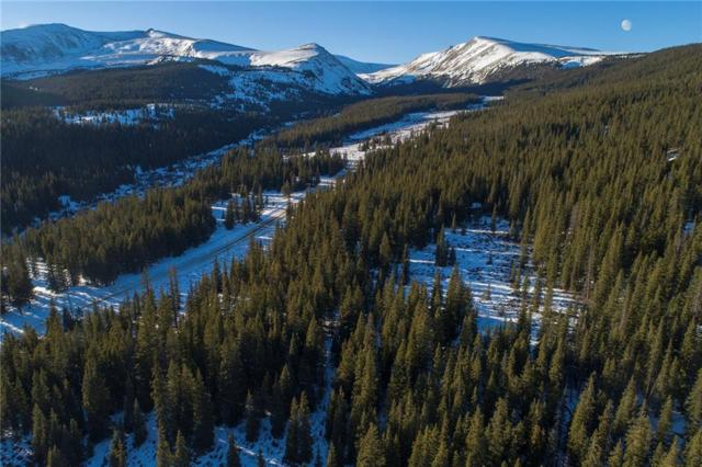 576 Gold Trail, Fairplay, CO 80440 (MLS #S1011597) :: Resort Real Estate Experts