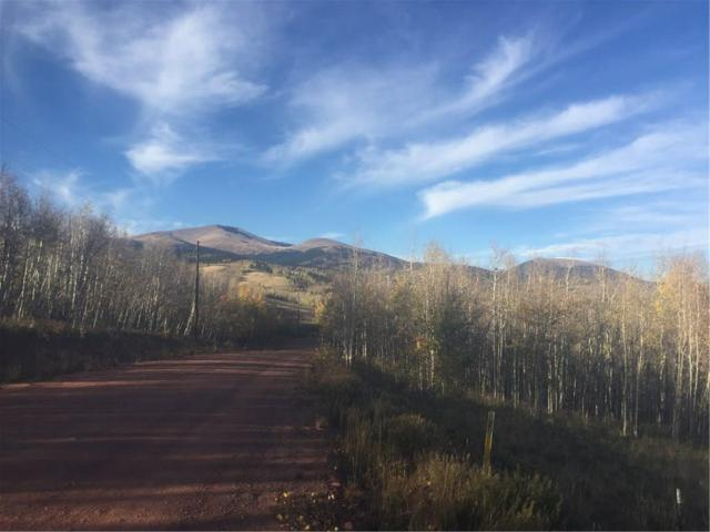 396 Iron Mountain Road, Fairplay, CO 80440 (MLS #S1011602) :: Resort Real Estate Experts