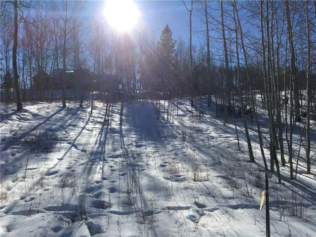2175 Golden Eagle Road, Silverthorne, CO 80498 (MLS #S1011605) :: Colorado Real Estate Summit County, LLC