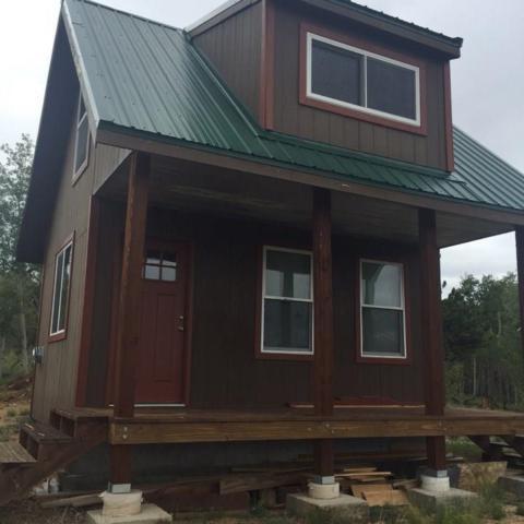 59 Chamber Lane, Como, CO 80432 (MLS #S1011644) :: Resort Real Estate Experts