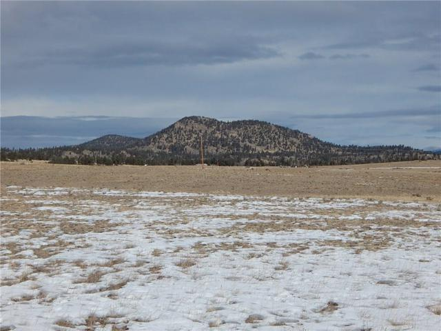 123 Jims Way, Como, CO 80432 (MLS #S1011653) :: Resort Real Estate Experts