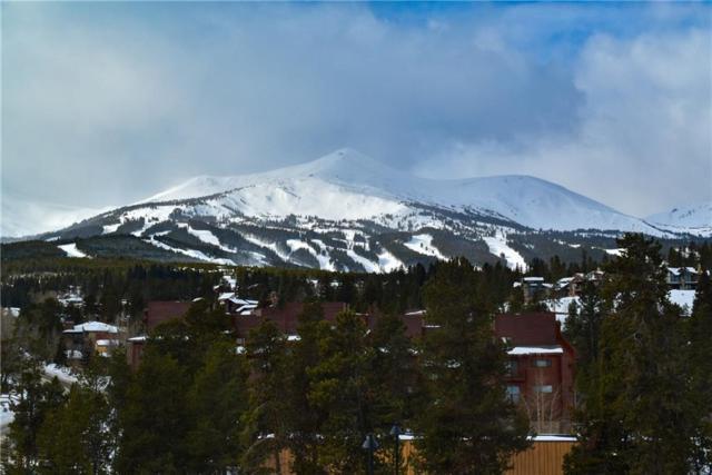 110 S Park Avenue S #117, Breckenridge, CO 80424 (MLS #S1011673) :: Colorado Real Estate Summit County, LLC