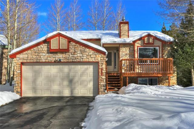 268 N 6th Ave Court, Frisco, CO 80443 (MLS #S1011691) :: Colorado Real Estate Summit County, LLC