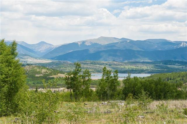 10 Black Diamond Trail 10A, Silverthorne, CO 80498 (MLS #S1011695) :: Resort Real Estate Experts