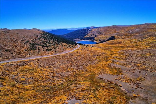 12356 Guanella Pass Rd, Georgetown, CO 80444 (MLS #S1011711) :: Resort Real Estate Experts