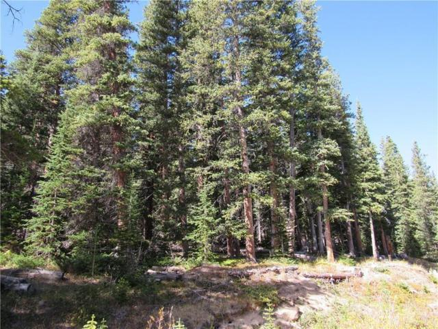 171 Bum Drive, Fairplay, CO 80440 (MLS #S1011714) :: Resort Real Estate Experts