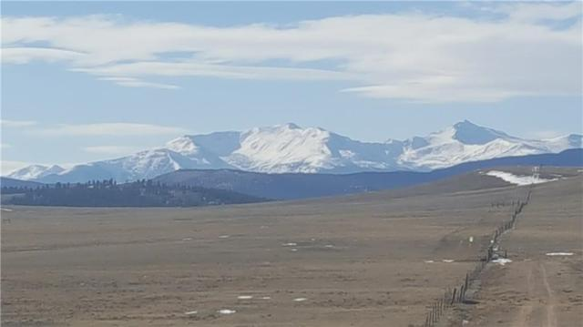 530 Apalachee Trail, Hartsel, CO 80449 (MLS #S1011761) :: Resort Real Estate Experts