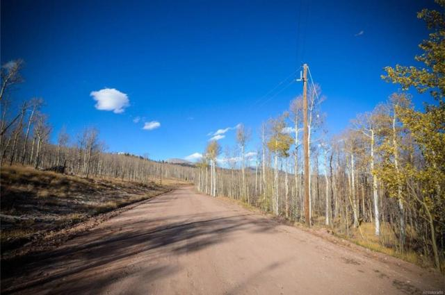 555 Little Baldy Circle, Fairplay, CO 80440 (MLS #S1011836) :: Colorado Real Estate Summit County, LLC