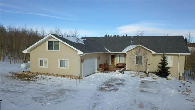 64 Boreas Circle, Jefferson, CO 80456 (MLS #S1011850) :: Resort Real Estate Experts