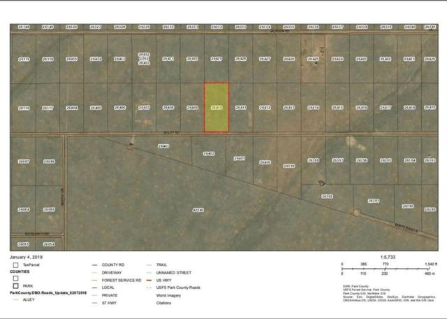 8437 Routt Road, Hartsel, CO 80449 (MLS #S1011860) :: Colorado Real Estate Summit County, LLC