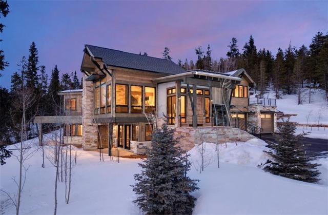 220 Briar Rose Lane, Breckenridge, CO 80424 (MLS #S1011931) :: Resort Real Estate Experts