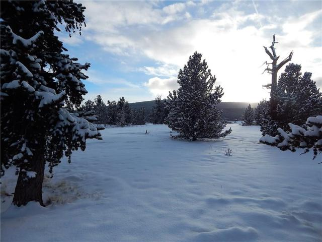 1688 Mullenville Road, Fairplay, CO 80440 (MLS #S1011944) :: Resort Real Estate Experts