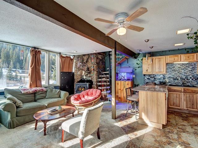 136 Lance Lane #1, Breckenridge, CO 80424 (MLS #S1011952) :: Colorado Real Estate Summit County, LLC