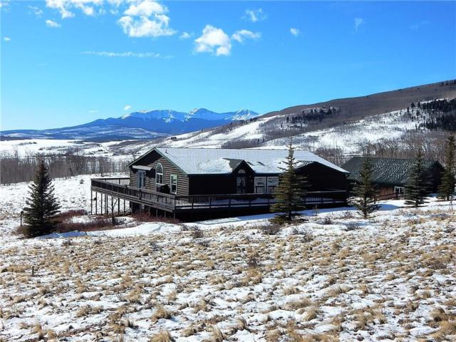 1353 Sheep Ridge Road, Fairplay, CO 80440 (MLS #S1011975) :: Colorado Real Estate Summit County, LLC