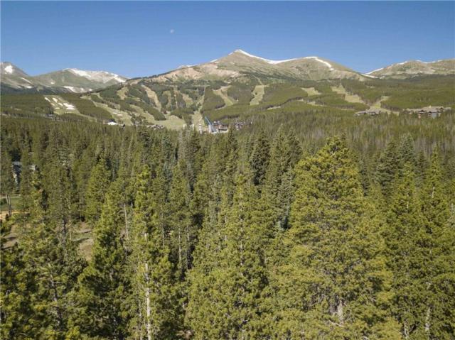 76 Cucumber Drive, Breckenridge, CO 80424 (MLS #S1012015) :: Colorado Real Estate Summit County, LLC