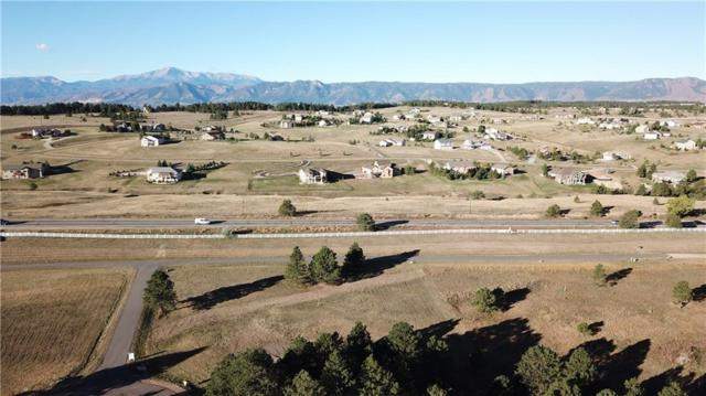 3304 Blue Heron Spring Lane, Other, CO 80908 (MLS #S1012140) :: Colorado Real Estate Summit County, LLC