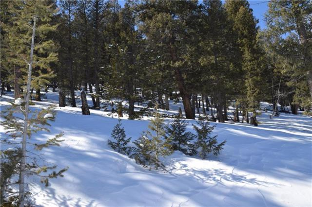 TBD Redhill Forest, Fairplay, CO  (MLS #S1012151) :: Resort Real Estate Experts