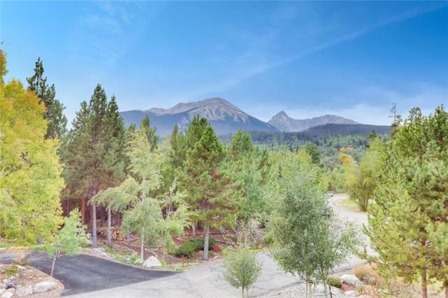 1746 Red Hawk Road, Silverthorne, CO 80498 (MLS #S1012233) :: Colorado Real Estate Summit County, LLC