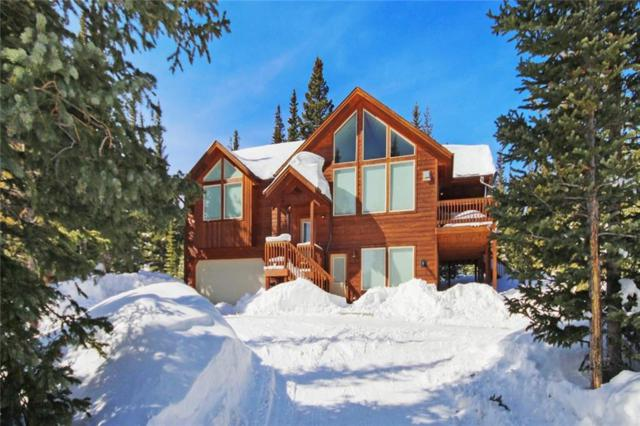 363 Silverheels Place, Fairplay, CO 80440 (MLS #S1012241) :: Colorado Real Estate Summit County, LLC